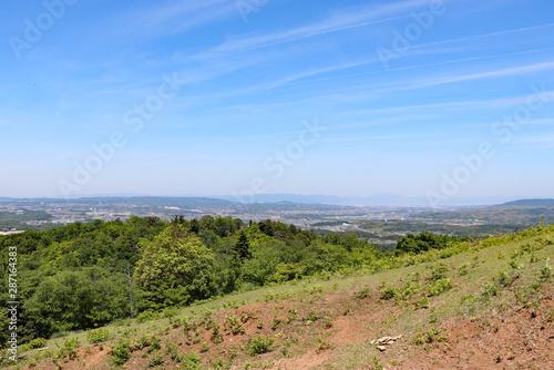 Spoed Foto op Canvas Grijze traf. 緑の山を登る