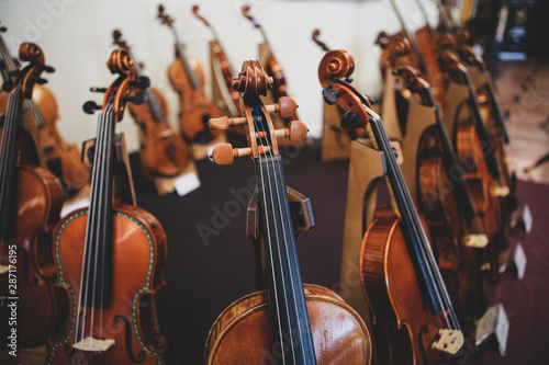 Details with the scroll, peg box, tuning pegs, strings, neck and fingerboard of a violin before a symphonic classical concert - 287176195