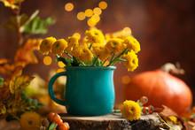 Beautiful Yellow Flower In Blu...