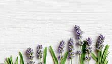 Lavender Flowers On White Wood...