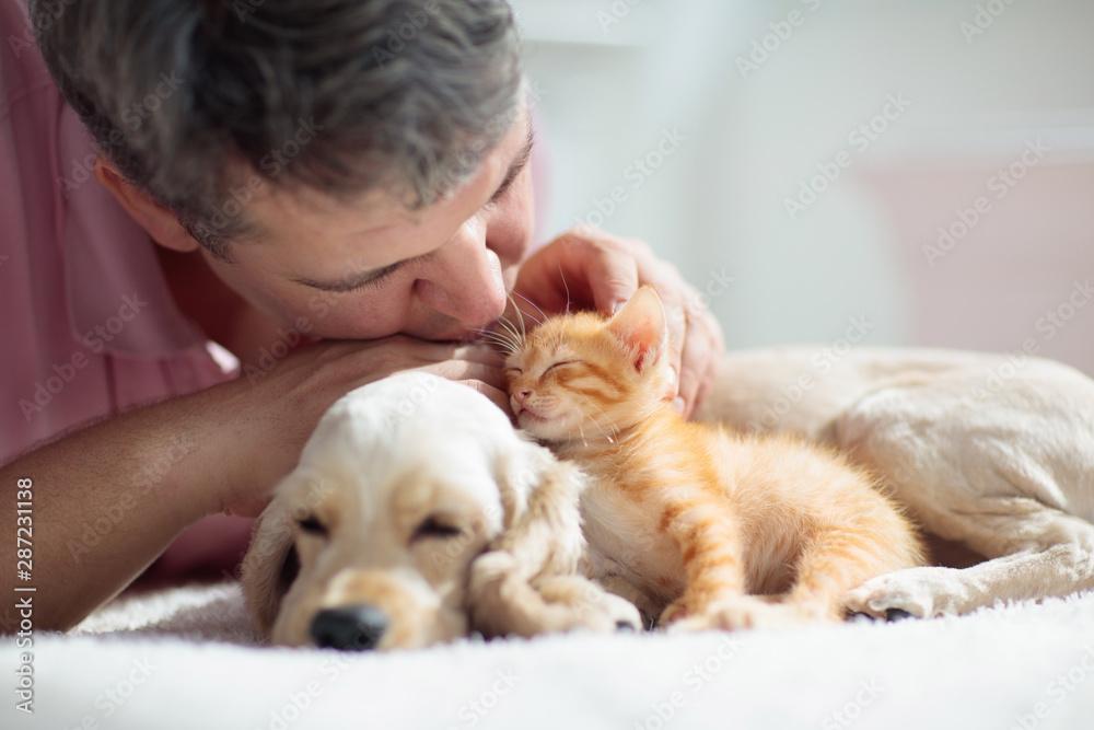 Fototapety, obrazy: Cat and dog sleeping. Puppy and kitten sleep.