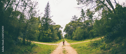A woman stands at the crossroads of two forest roads. Wallpaper Mural