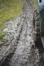 The Truck Rides Mud