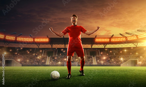 Fotografie, Tablou  Soccer player celebrates victory on a stadium in front of cheering fans