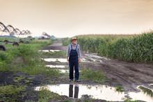 Farmer In Flooded Field