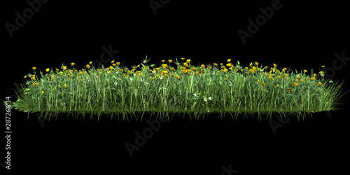 Cadres-photo bureau Noir Grass isolated. Image useful for banners, posters or photo maipulations. 3d rendering.