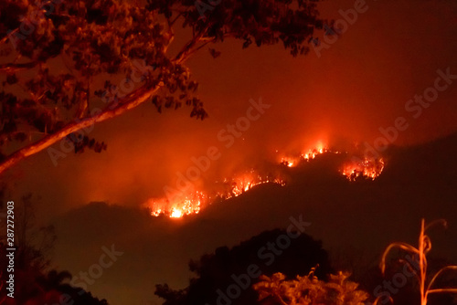 Montage in der Fensternische Violett rot Amazon forest fire disater problem.Fire burns trees in the mountain at night.