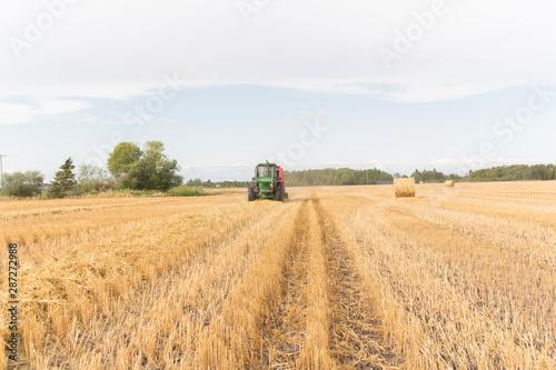 Foto auf Gartenposter Landschappen tractor on a swathed field bailing hay