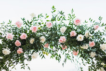 Wedding Ceremony Arch Arrangement Decoration. Greens And Roses In Pink Pastel Color. Isolated On White Background.