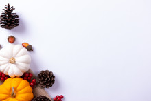 Top View Of Pumpkin And Red Berries On White Paper Background. Thanksgiving Day Or Autumn Concept.