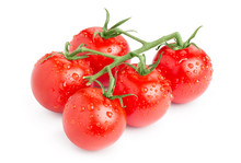 Branch Of Delicious Fresh Cherry Tomatoes With Water Drops, Isolated On White Background