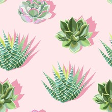 Seamless Pattern With Succulent On Pink Background