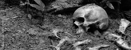 Fotografía  The skulls and pile of bone in pit the graveyard; discover by dig in cemetery
