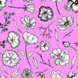 canvas print picture Floral Seamless Pattern Black and white hand drawn illustration in realistic style. Small graceful plants with black contour isolated on pink. Can be used for invitation cards, banners, flyers.