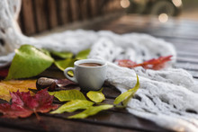 Ceramic Cup Of Coffee With Foam, White Khitted Shawl, Dry Colorful Fallen Leaves And Chestnut On Wet Wooden Bench In Autumn. Close-up