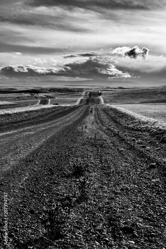 Road in endless Patagonia plains