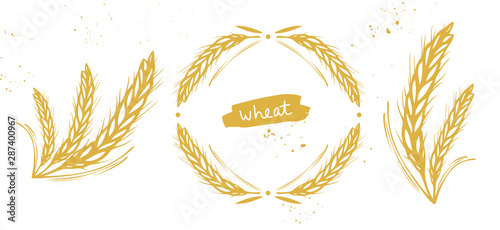 Fotografia Wheat, barley, rye ears set