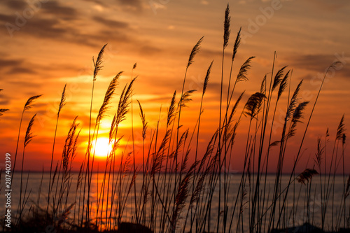 Fototapeta beautiful chesapeake bay colorful sunrise landscape in southern maryland calvert county usa obraz