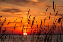 Beautiful Chesapeake Bay Colorful Sunrise Landscape In Southern Maryland Calvert County Usa