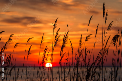 Fotobehang Oranje eclat beautiful chesapeake bay colorful sunrise landscape in southern maryland calvert county usa
