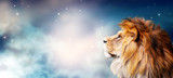 Fototapeta Sawanna - African lion and night in Africa. Savannah moonlight landscape, king of animals. Portrait of proud dreaming fantasy leo in savanna looking forward on stars. Majestic dramatic spectacular starry sky.
