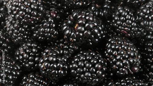 Fényképezés  many BlackBerry at day