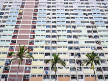 Dense Colourful Flat Houses Wtih Palm Trees Respresenting The Over Population Of Hong Kong And Instense Dense Housing