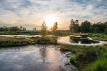 Diepholz Bog In Low Saxony, Germany