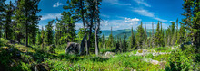 Panoramic Sunny Summer View In...