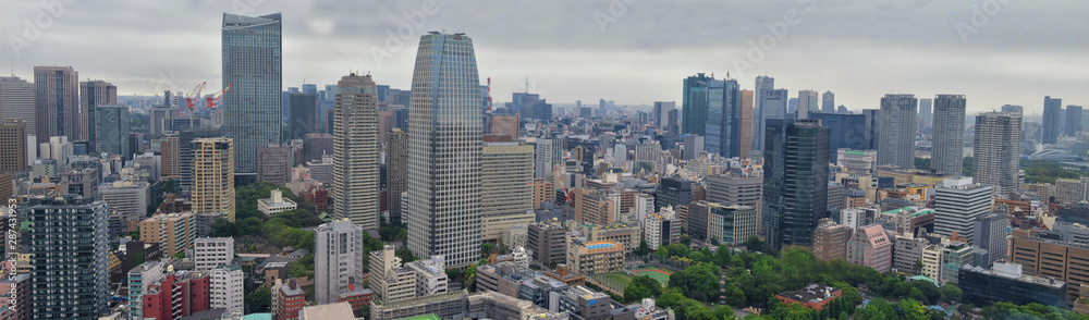 Fototapety, obrazy: Tokyo Japan skylines and skyscrapers buildings, aerial view, around Shinjuku ward. Asia.