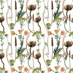 Fototapeta Vintage Watercolor floral pattern, wild flowers queen anne's lace and herbs, leaves. Gentle botanical wallpaper. White, pink flowers,Retro colors