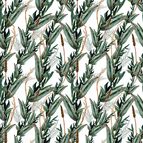 akwarela-eukaliptusa-wzor-recznie-malowane-galezie-i-liscie-eukaliptusa-kolce-kwiatowa-ilustracja-do-projektowania-drukowania-tkaniny-lub-tla
