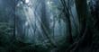 Leinwandbild Motiv Deep tropical jungle in darkness