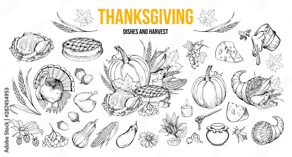 Fototapety, obrazy: Thanksgiving coloring book illustrations set. Traditional autumn holiday celebration hand drawn symbols. Fall season harvest, natural vegetables. Turkey, pumpkin, honey and pie monochrome drawings