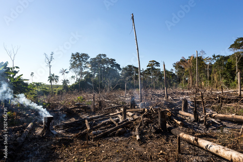 Amazon rainforest burning under smoke in sunny day in Acre, Brazil near the border with Bolivia Fototapet