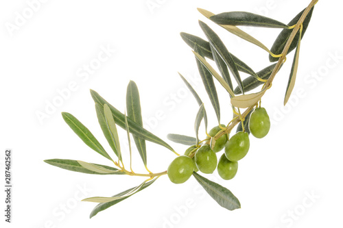 Poster Olijfboom Olive tree branch with leaves and some green olives, isolated on white background, close-up