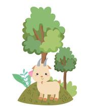 Isolated Goat Cartoon Vector D...