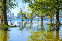 Toronto Islands Flooded