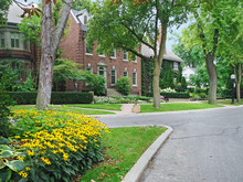 Tree-lined Residential Street ...