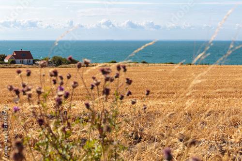 Fototapeta View of La Manche from Pas de Calais
