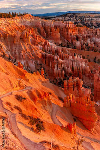 Tela view of bryce canyon