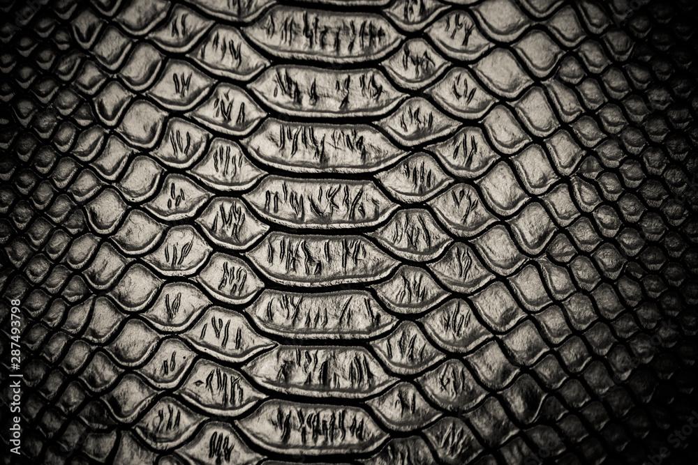 Fototapety, obrazy: Black snake skin pattern texture