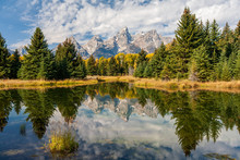 Landscape Of Mountains And Tre...