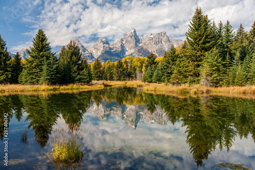 Fotomural Landscape of mountains and trees of the Grand Teton range reflected in the ponds