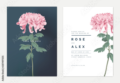 Fototapeta Minimalist floral wedding invitation card template design, pink Chrysanthemum mo