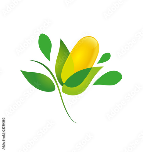 Vege capsule, flower and leaves Canvas Print