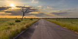 Fototapeta Sawanna - Paved road through savanna