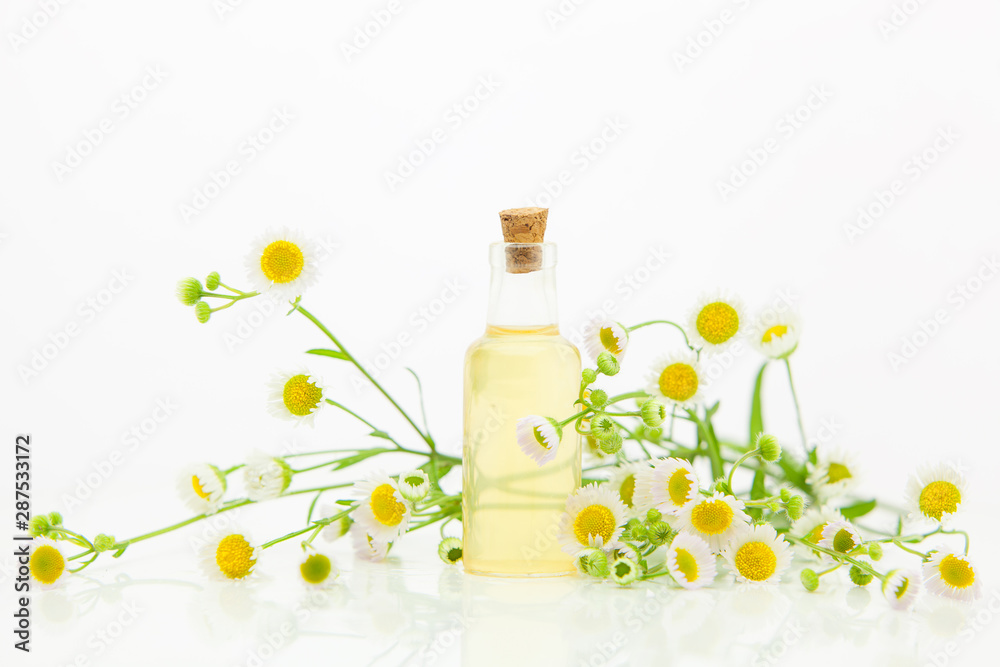 Fototapety, obrazy: Essence of flowers on table in beautiful glass bottle