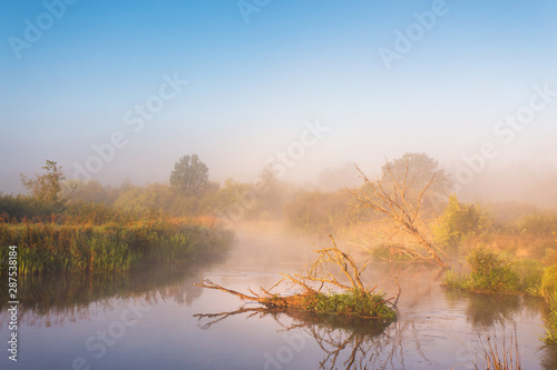 Fotografia  Autumn foggy rural sunrise. Sunny morning on river