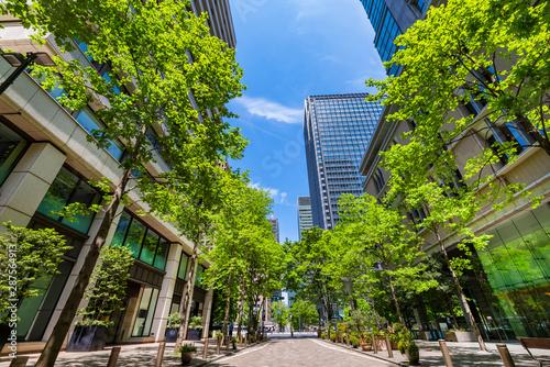 新緑の丸の内仲通りの風景 Canvas-taulu